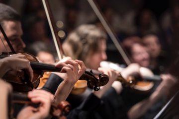 Orchestra © Larisa Birta